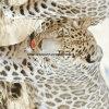 Zerstreung 100%Polyester druckte edle 3D Gewebe für Bettwäsche-Set