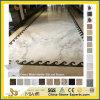 Narural Pulido Blanco/Negro/Gris/mármol o granito cuarzo//Pizarra/Travertino/arenisca/techo/mosaico Mosaico de piedra para cocina, cuarto de baño/Piso/pared/Material de construcción