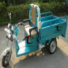 triciclo eléctrico del cargo del motor de la rueda 800W tres