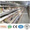 Промотирование тип клетки батареи цыпленка для слоев