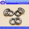arandela especial modificada para requisitos particulares del acero inoxidable 304 316