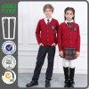 2016 свитеров школьной формы полосы красивейших японских