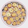 Linea di produzione automatica del biscotto di burro