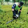 Cesoia per tagliare le siepi 600 /750 (SLP600) con Ce e EUR2