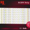 5050 Rgbww Non-Waterproof LED Strip Lights 72LEDs/M IP22 DC24V
