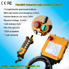 Control remoto F24-8d eléctrico de máquina pesada de carga de la grúa