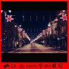 Luz ao ar livre do motivo de Pólo da rua do Natal do diodo emissor de luz da classe comercial