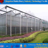 Factory Price Architectural Greenhouse Tempered Laminated
