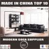 Sofa en cuir de clavette de jeux de salle de séjour de meubles de l'Australie