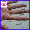 En ячеистой сети Chicken/Hexagonal, Bs, стандарт DIN (LS-01)