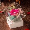 Cadre acrylique de fleur fraîche de constructeur