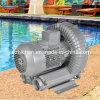 De Schoonmakende Vacuümpomp van de Ventilator van de Lucht van de Verluchting van het Zwembad