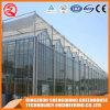 Estufa de vidro da Multi-Extensão de China para flores
