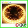 Cinta caliente del blanco DC12V/24V 5630 SMD LED