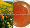 Высшего уровня 100%Natural Organic Wild Mountain Flower Honey, Organic Ripe Honey, отсутствие Antibiotics, отсутствие Pesticides, отсутствие Pathogenic Bacteria, Prolong Life, Health Food