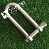 Acier inoxydable Long D Shackle