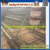 Cage de couche (type L3 avec le ystem alimentant automatique)