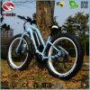 중국 공장 최신 판매 전기 바닷가 자전거 판매를 위한 뚱뚱한 타이어 기관자전차