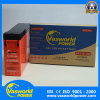 OEM Brand Front Terminal 12V 100ah Sealed Rechargeable Battery