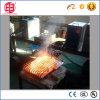 Fornalha do tratamento térmico do ferro do aço inoxidável/Steel/Casting
