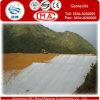 Géotextile de fibre de short d'escompte de 90% avec bon UV-Résistant