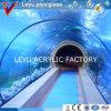 Parte acrílica do túnel em uns aquários públicos com vário radiano