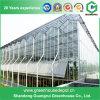 Pc-Strato di alta qualità/vetro/Plastica-Pellicola coperta per la serra