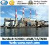 Puissance de la biomasse végétale entrepreneur EPC