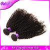 Pacotes Curly não processados Curly Kinky do Weave do cabelo humano da classe 7A Brazillian do cabelo do Virgin do cabelo brasileiro do Virgin