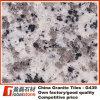 화강암 도와 (G439)