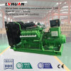 ISO CE комплекта генератора 200kw газа Biogas газа метана