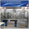 Haustier-Massen-Saft-Flaschenabfüllmaschine/Zeile