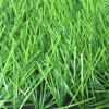 Stamm Shape UV-Resistent Artificial Turf Grass für Football und Decoration