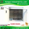 Hachure de la machine/de incubateur d'incubation d'oeufs de 5280 oeufs de poulet