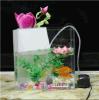 Heet verkoop de Hoge Transparante Tank van Vissen/de AcrylKom van Vissen Tank/Fish
