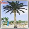 Palmeira artificial da data da decoração ao ar livre direta da fábrica