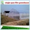 버섯을%s 고품질 강철 구조물 녹색 집
