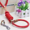 Fourniture de produits pour animaux de compagnie Hache de chien (H008)