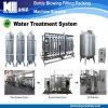 Terminar o sistema oco do filtro de água mineral da fibra