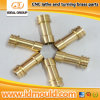 CNC Lathe und Turning Brass Rapid Prototype
