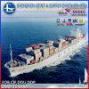 중국에 있는 체코 프라하에 바다 Shipping 중국