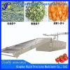 Essiccatore di fascia della maglia del nastro trasportatore (acciaio inossidabile)
