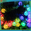 祝祭の装飾的なきらめくランプ妖精LEDのカーテンライト