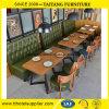 Quatro - tabela de jantar da pessoa e jogo modernos da cadeira