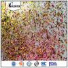 Het onregelmatige Pigment van de Vlokken van het Kameleon, het Pigment van de Spijker Chromaflakes