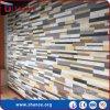 tuiles décoratives molles antidérapage de 600X300mm pour des façades