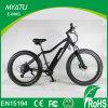 광저우에서 최신 판매 산 E 자전거 지방질
