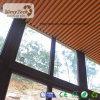 WPC zusammengesetzte hölzerne Decke (100X25mm)