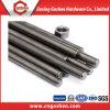 Нержавеющая сталь 304 316 продетая нитку штанга цены по прейскуранту завода-изготовителя