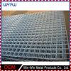 溶接網の価格10X10の正方形の金属のステンレス鋼の安い金網